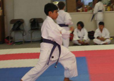 Gensei Ryu 2015 Saul Kata Cropped